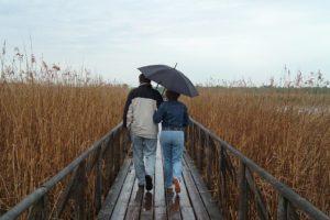 couple walking with umbrella on marshland walkway
